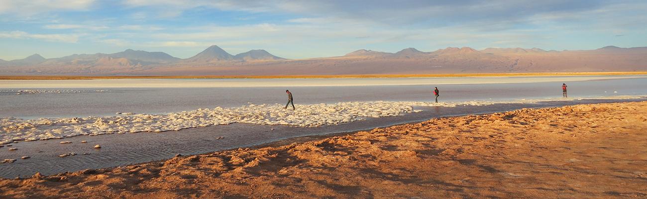 Tara   Las prodigiosas alturas de Atacama