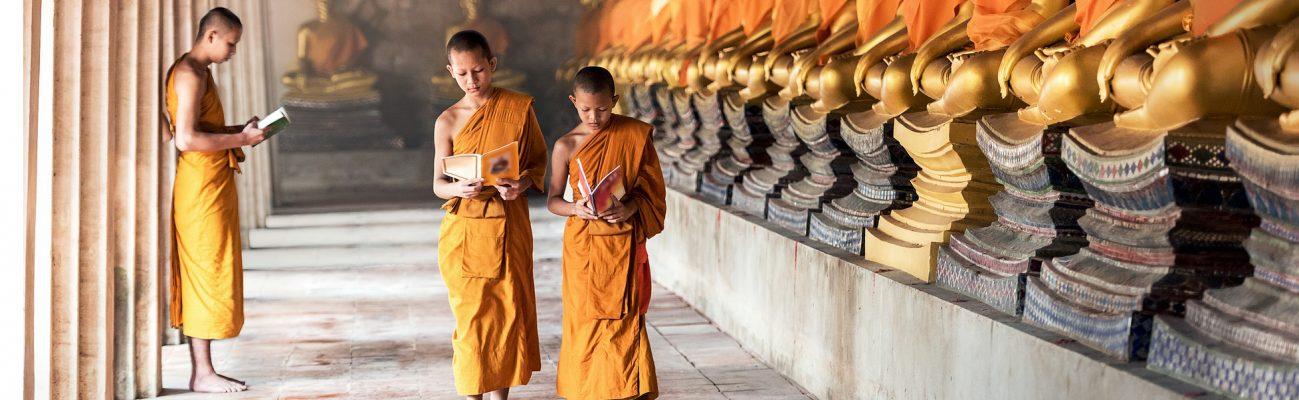 Dharamsala   Luces y sombras en torno al Tibet