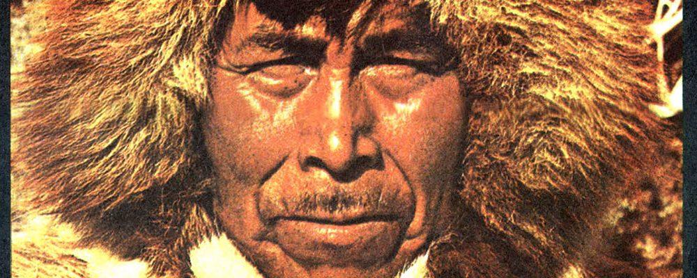 Viaje Increíble  | al mundo de los iglúes