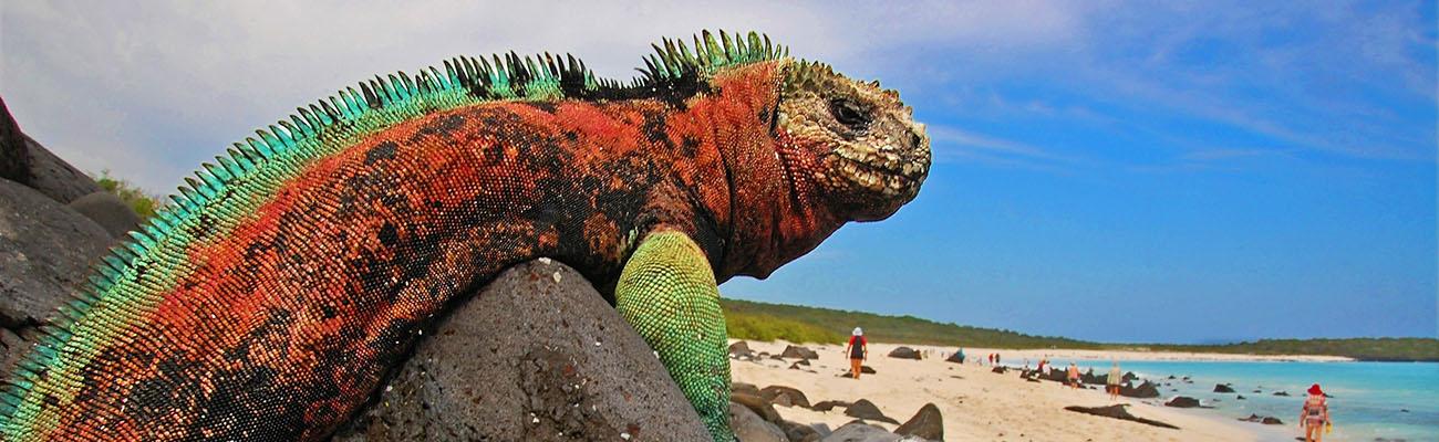 Ecuador triunfó en Galápagos