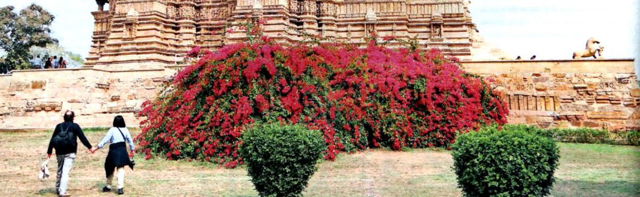 India. Khajuraho    Mil años de asombro y misterios